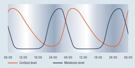 cortisol-and-melatonin
